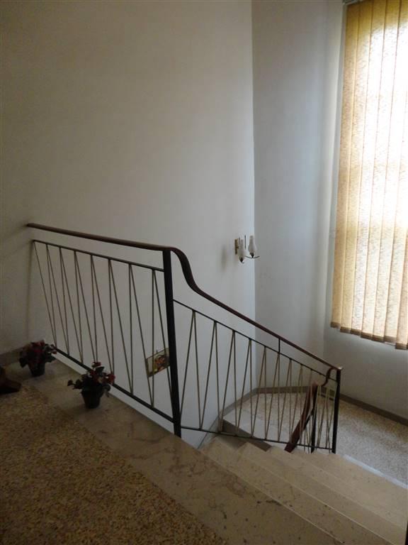 Appartamento in vendita Rif. 10262624