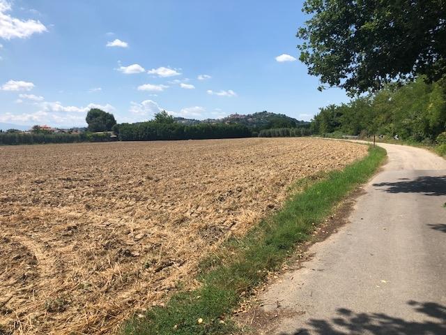 Terreno in vendita, Spinetoli pagliare