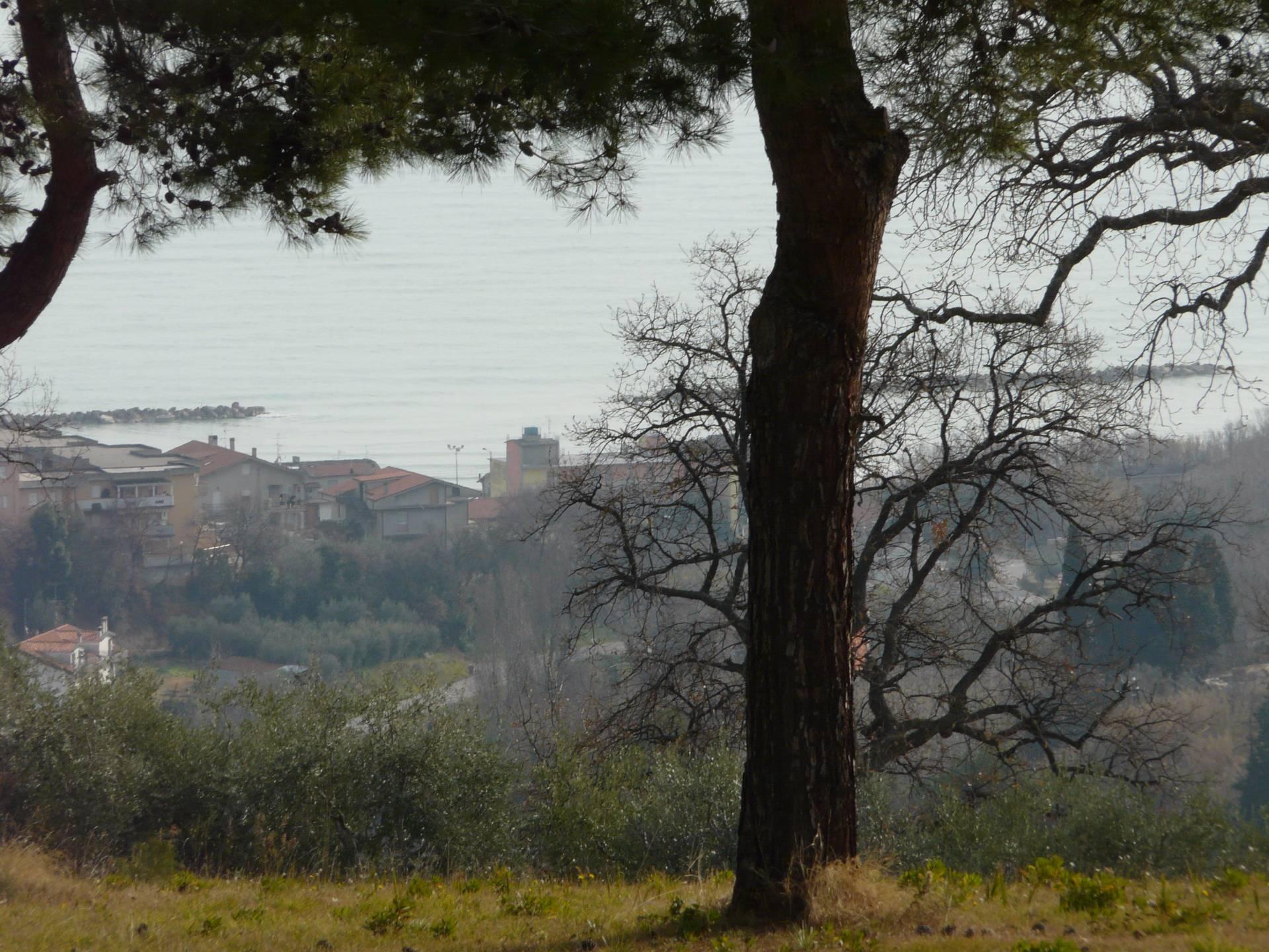 Vendo terreno a Massignano Rif. 5325683