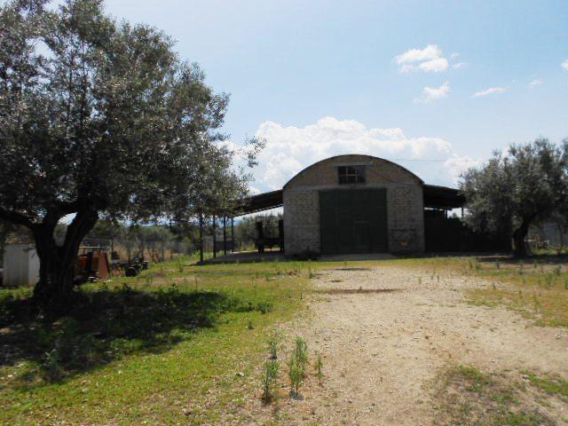 Stabile / Palazzo in vendita Rif. 5053898