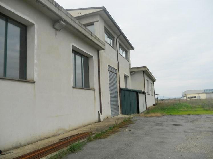 Affitto capannone a Tuscania Rif. 5077833