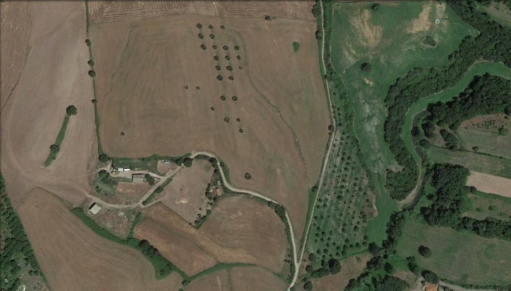 Terreno agricolo a Marta Rif. 5125643